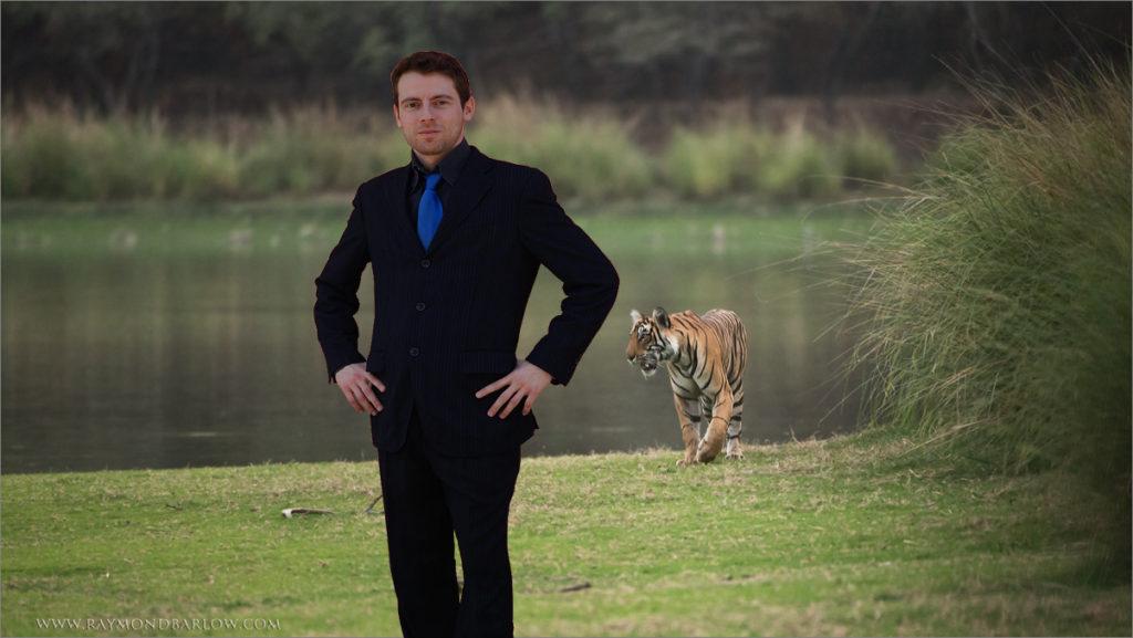 Tiger_Background