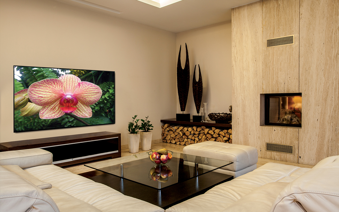 Home Cinema-TV or Front Projection?